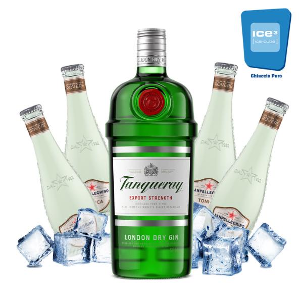 Sanpellegrino Wood Tonic Gin Tonic Kit - per 10 persone