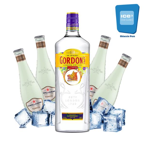Gordon's - Gin Tonic Kit - per 10 persone