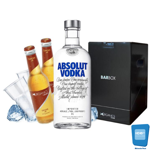 Barbox - Absolut e Ginger Ale Kit - per 10 persone